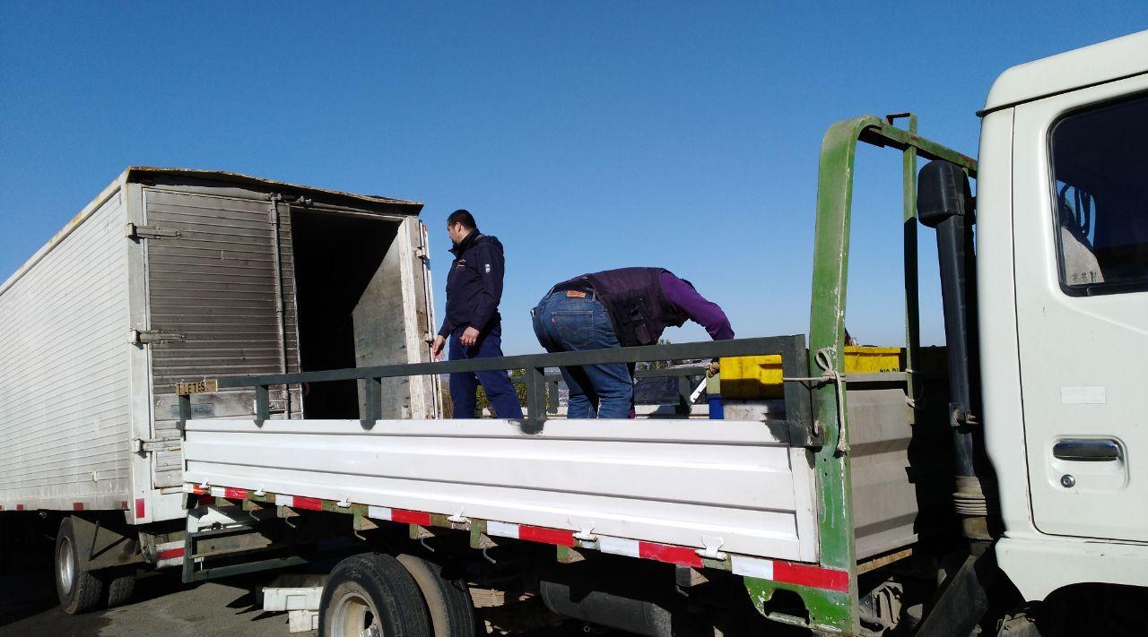 En inmediaciones de feria del Estero Viña del Mar detectan camión con 3,3 toneladas de merluza provenientes de pesca ilegal