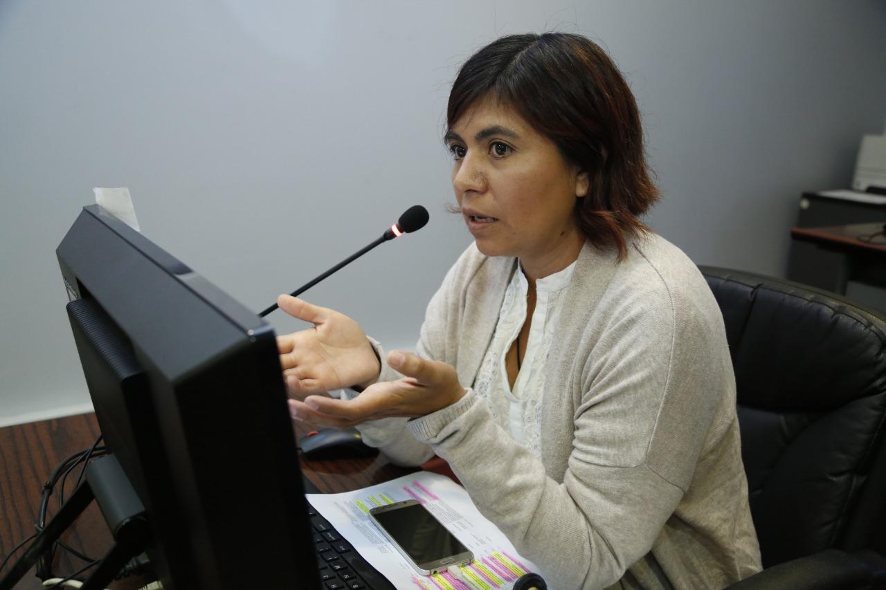 Consejera regional Valeria Melipillán ofició a directores de Servicio de Salud de la región