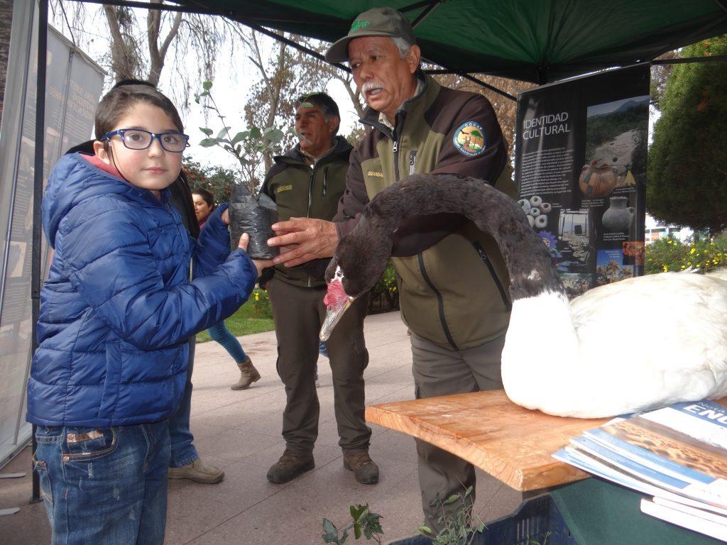 CONAF celebró los 66 años de la Reserva Nacional Lago Peñuelas con vecinos de Casablanca