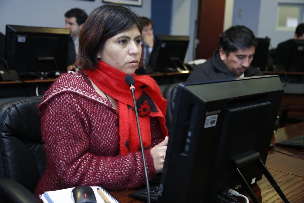 Movimiento Autonomista rechaza «toque de queda» de alcalde de Quilpué