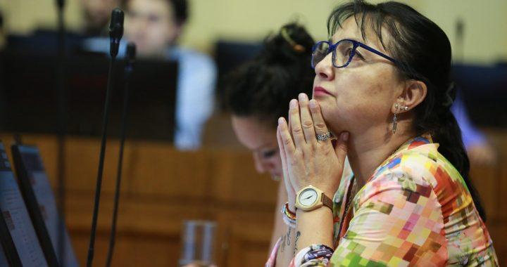 Diputada Marzán destacó avance en la Cámara de Diputados del proyecto que reconoce al olor como agente contaminante