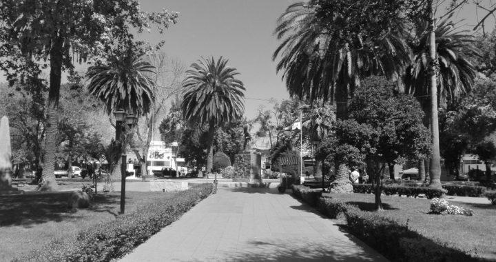 Nuestras bodas de Caná: cuando el agua se convirtió en vino en Casablanca, por Francisco Riquelme López