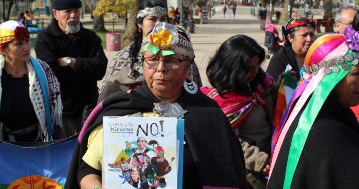 Asociaciones de Pueblos Originarios de Marga Marga manifestaron su rechazo a Consulta Indígena