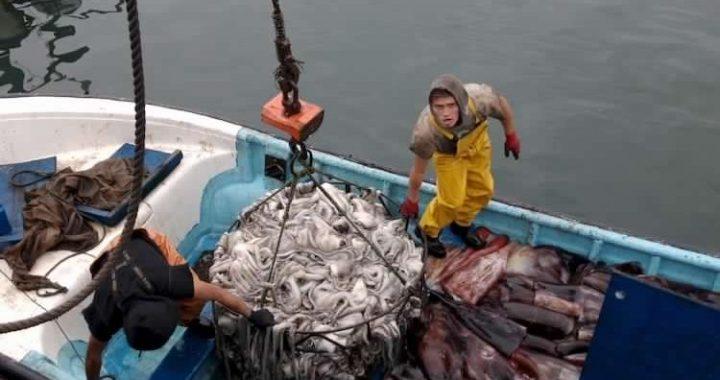 Pescadores preparan gran marcha para impedir que posterguen la Ley de la Jibia