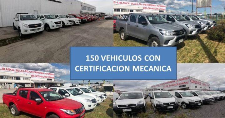 Tattersall GDA rematará más de 120 vehículos de forma online en el sur de Chile